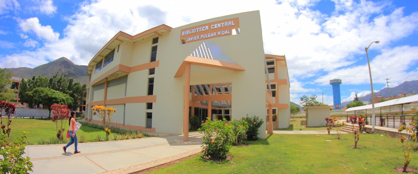 Universidad Nacional Hermilio Valdizán